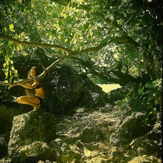 Francine dans la jungle